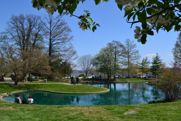 The vast collection of Cincinnati Parks makes it one of the great activites for seniors to enjoy the outdoors.